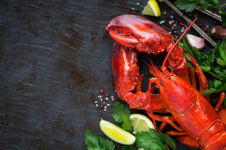 Ilustrasi lobster.