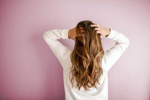 Pilihan Perawatan Menyeluruh dari Erha untuk Berbagai Masalah Rambut