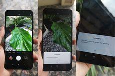 Jawaban Xiaomi Terkait 10 Masalah di Pocophone F1