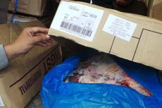 Daging Sapi Impor dari Australia Dijamin Halal
