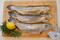 Cara Hilangkan Bau Amis pada Ikan, Beri Perasan Jeruk Nipis