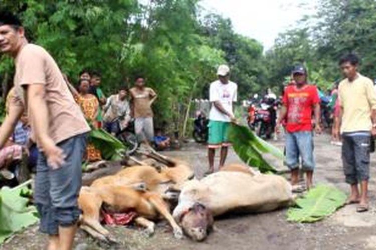 Puluhan sapi ditemukan mati, saat banjir bandang melanda di Dusun Lanrae, Kemamatan Malusetasi, Kabupaten Barru, Sulawesi Selatan