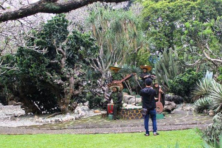 Salah satu spot berfoto atau selfie pertama di Kebun Raya Bogor yaitu taman Meksiko. Bebatuan dan tanaman kaktus yang khas membuat pemandangannya se otentik negara asalnya.