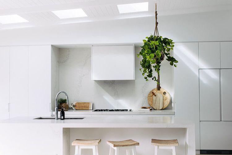 Tanaman sirih gading untuk dekorasi dapur serba putih