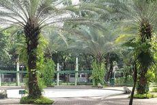 Mengenal Taman Kodok, Tempat Ma'ruf Amin Berolahraga Sebelum Pelantikan Presiden
