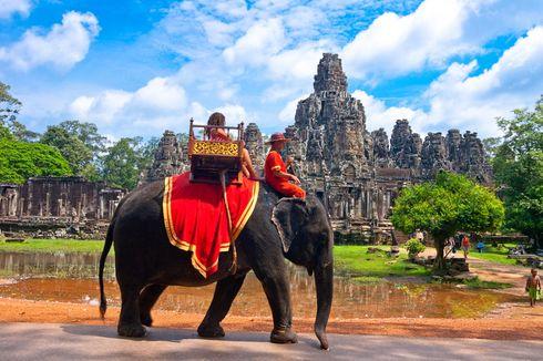 2020, Atraksi Naik Gajah di Angkor Wat Bakal Dihapuskan