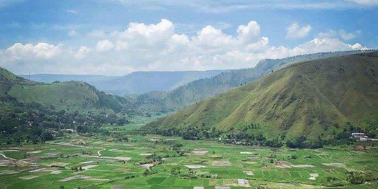 Hamparan sawah di Desa Bonan Dolok, Samosir, Sumatera Utara.