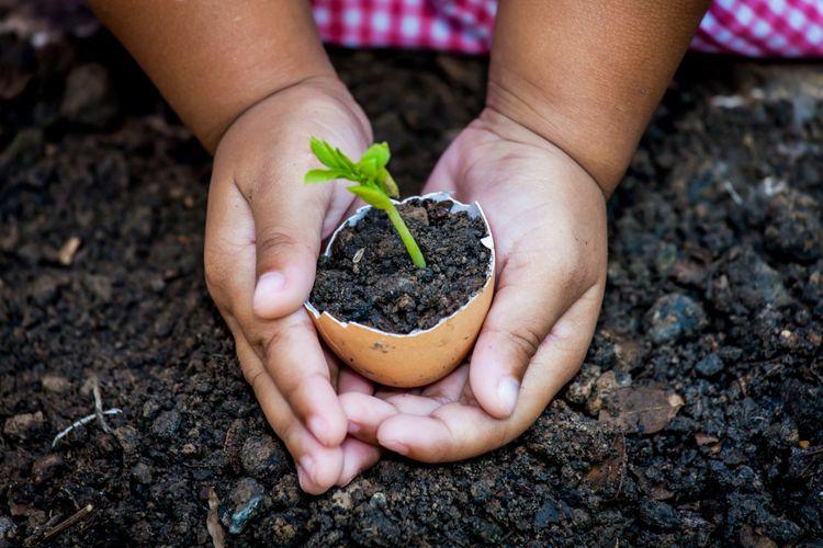 Mengajari anak mencintai lingkungan dengan berkebun