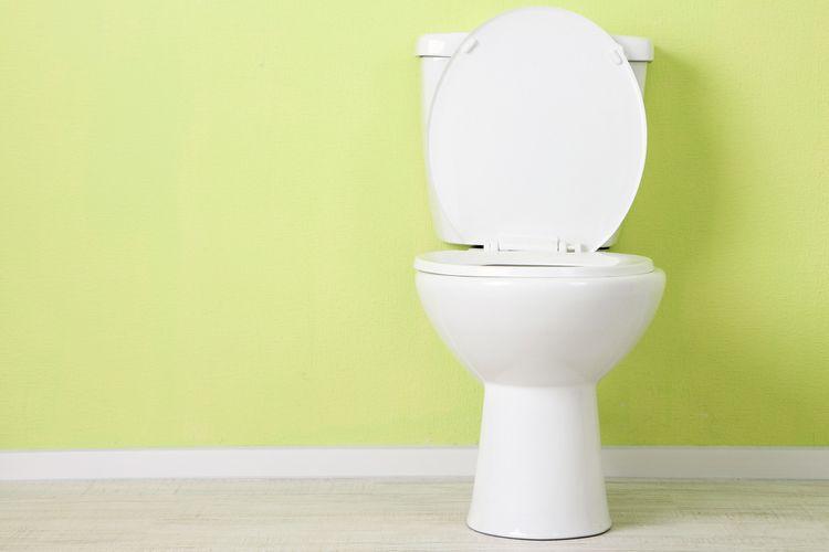 Ilustrasi WC duduk, toilet duduk