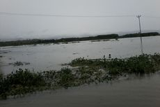 Banjir di Kabupaten Buru Rendam 450 Hektar Sawah