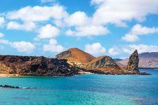 Wisatawan yang Sudah Divaksinasi Bisa Kunjungi Ekuador, Termasuk Galapagos