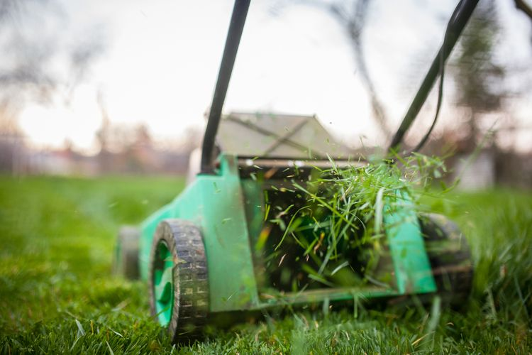 Ilustrasi memotong rumput