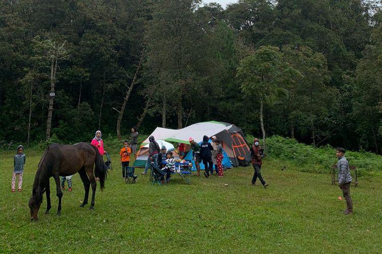 Area camping di Jungle Milk Lembang dengan kuda-kuda yang berkeliaran di sekitarnya