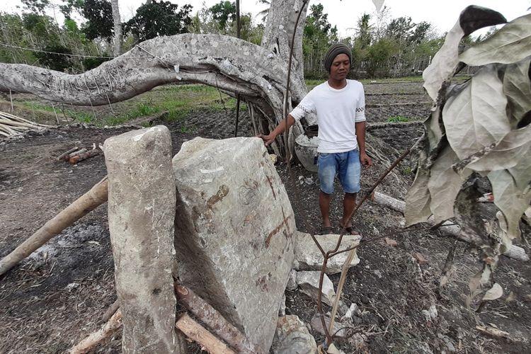Warga Menunjukkan Batu Diduga Menhir dan Batu Bergambar Wayang di Dusun Sawahan II, Desa Bleberan, Kecamatan Playen, Gunungkidul