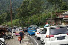 Puncak Bogor Padat Wisatawan Asal Jakarta, Ini Respons Kadispar Jabar