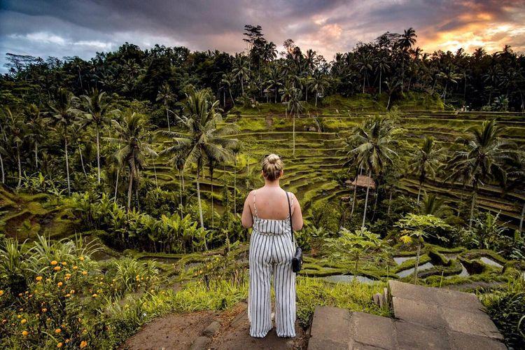 Turis asing di sawah berundak Ubud, Bali