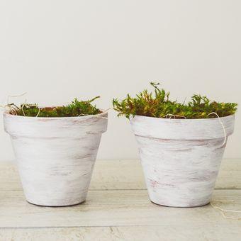 ilustrasi pot bunga minimalis