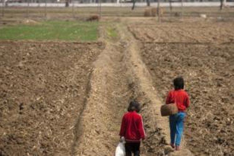 Ladang-ladang pertanian di Korea Utara sangat menderita akibat musim kering yang diklaim paling parah selama 100 tahun terakhir.