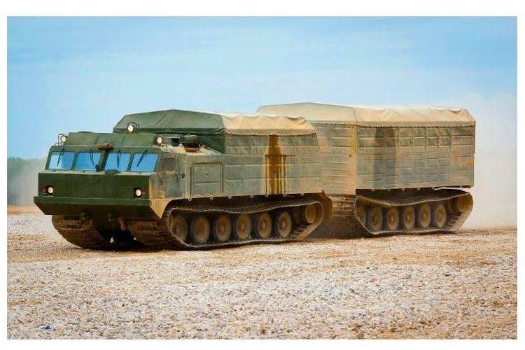 Vityaz DT-30