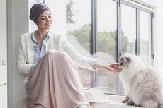 Kenapa Perawatan Kanker Menyebabkan Rambut Rontok?