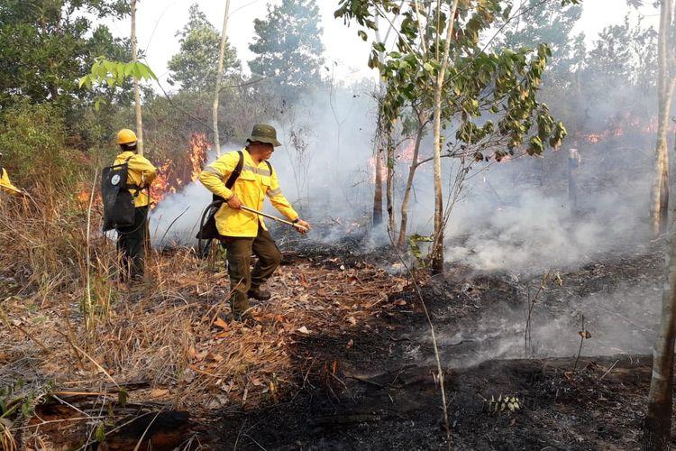 Petugas sedang memadamkan titik di Kampung Labanan Kecamatan Teluk Bayur Kabupaten Berau, Kalimantan Timur, Senin (9/9/2019).