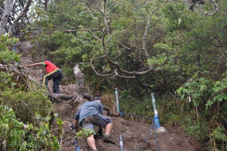 Salah Satu Jalur Terjal yang Dilalui Saat Mendaki Gunung Gede, Taman Nasional Gede Pangrango, Bogor, Jawa Barat