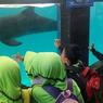 Catat, Harga dan Cara Beli Tiket Batang Dolphins Center 2020