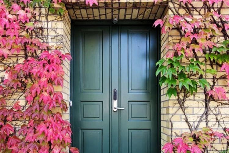 Ilustrasi pintu depan rumah berwarna hijau zamrud