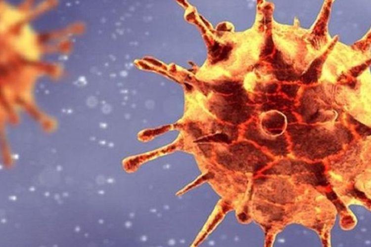Varian baru virus corona yang ditemukan di Inggris memiliki mutasi pada bagian receptor-binding domain, yang digunakan virus untuk menginfeksi sel tubuh manusia
