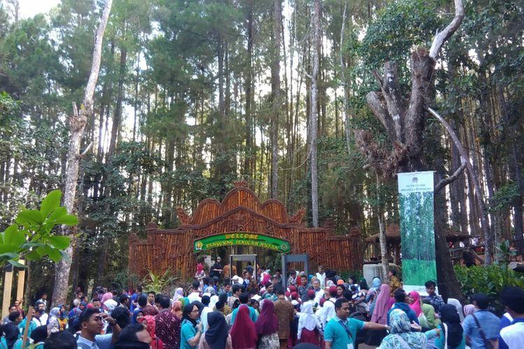 Hutan Pinus Mangunan di Bantul, DI Yogyakarta, saat dikunjungi Presiden Joko Widodo, Jumat (28/9/2018).