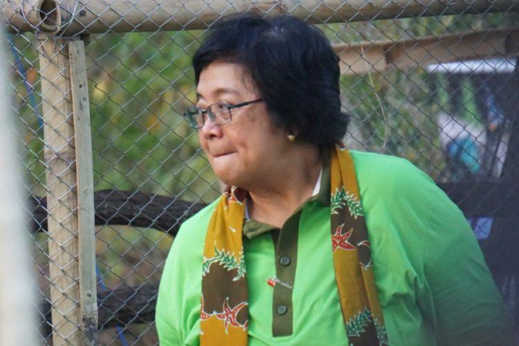 Menteri Lingkungan Hidup dan Kehutanan Siti Nurbaya saat melepasliarkan satwa liar di acara Hari Konservasi Alam Nasional di Taman Nasional Baluran, Jawa Timur, Kamis (10/8/2017).