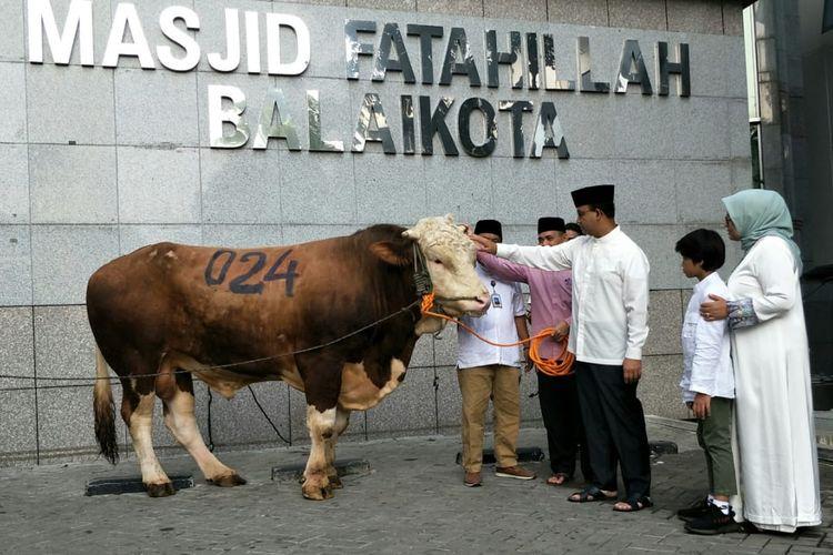 Gubernur DKI Jakarta Anies Baswedan menyerahkan sapi limosin seberat 1,2 ton untuk kurban kepada panitia kurban Pemprov DKI Jakarta di Balai Kota DKI Jakarta, Jalan Medan Merdeka Selatan, Minggu (11/8/2019).