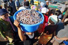 Nelayan Tak Melaut Selama 4 Hari, Harga Ikan di Kupang Merangkak Naik