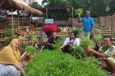 Manfaatkan Lahan Kosong, Warga Kebayoran Lama Panen Ratusan Kilogram Sayur