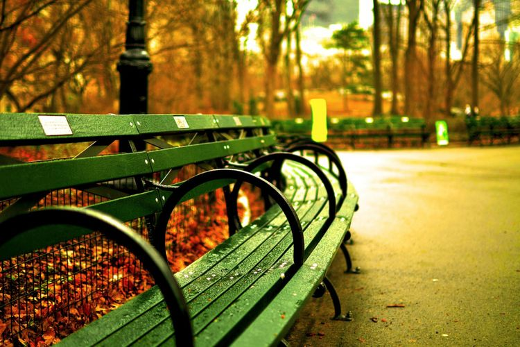 860 Koleksi Gambar Kursi Di Taman Gratis Terbaik