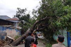 Dua Pohon Besar Tumbang dan Melintang di Jalan Prepedan
