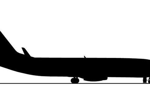 Polisi Periksa Petugas Sekuriti Bandara karena Seret Penumpang yang Laporkan Bau di Pesawat