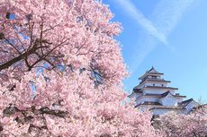 Jepang Bakal Terapkan Paspor Vaksin untuk Perjalanan Internasional