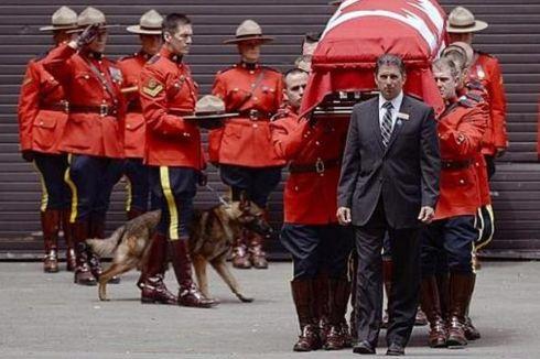 Anjing Polisi Kanada