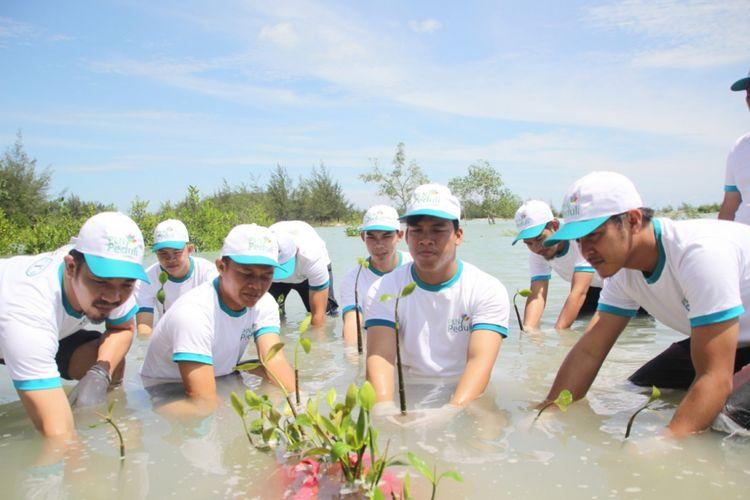 Aksi penanaman pohon di Pantai Rebo Bangka sebagai salah satu upaya meredam pemanasan global.