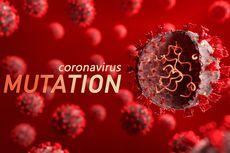 Benarkah Vaksin Menyebabkan Mutasi Virus Corona? Ini Kata Ahli