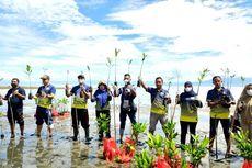 Gelar Aksi Peduli Lingkungan, PSDKP Ambon Tanam Mangrove hingga Lepas 1.500 Benih Ikan Kakap