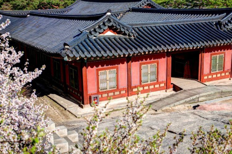 Istana Changgyeonggung di Korea Selatan