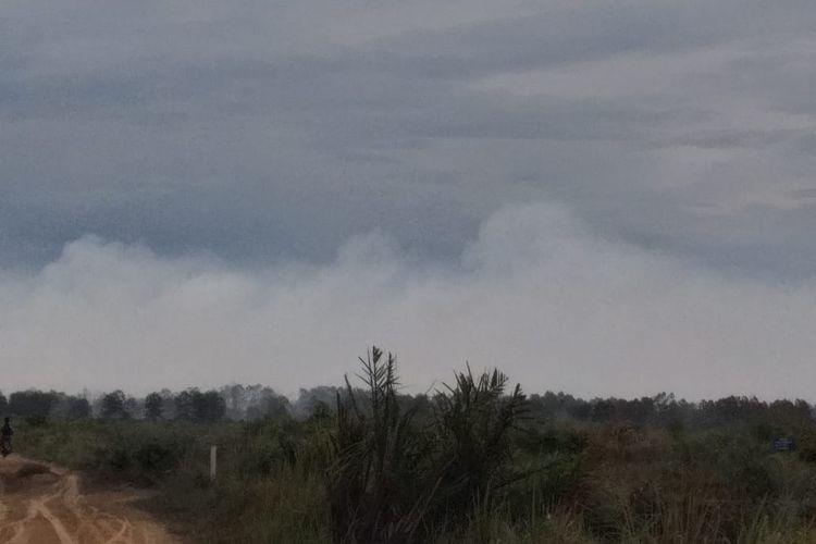 Kepulan asap putih yang keluar dari lokasi kebakaran hutan dan lahan (karhutla) di Desa Kuala Panduk, Kecamatan Teluk Meranti, mengarah ke permukiman warga Kecamatan Pangkalan Terap, Kabupaten Pelalawan, Riau, Selasa (12/3/2019).