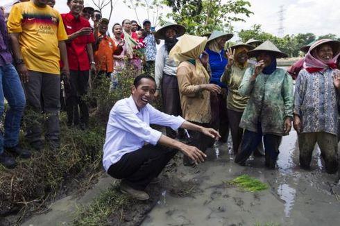 Jokowi, Politikus Tersukses Lakukan Branding