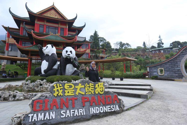Seorang pengunjung berpose di dekat patung replika dua panda raksasa asal China di Istana Panda Indonesia, Taman Safari Indonesia, Cisarua, Bogor, Jawa Barat, Rabu (1/11/2017). Sepasang panda, Cai Tao (jantan) dan Hu Chun (betina) yang berasal dari pengembangbiakan di China Wildlife Conservation Association (CWCA) akan diperkenalkan untuk publik pada November 2017 ini