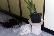 Pemeriksaan Kejiwaan Agus dan Margriet, Pot Bunga Pecah