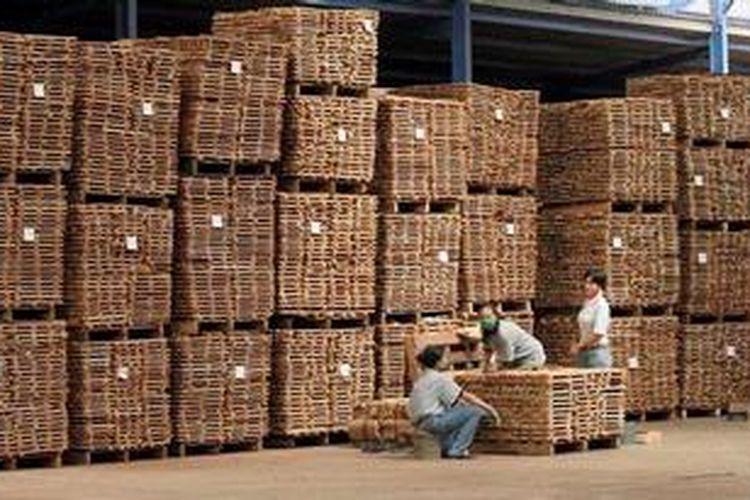 Ekspor Lantai Kayu - Pekerja tengah mempersiapkan bahan baku untuk pengerjaan lantai kayu dan furnitur luar ruang di PT Legenda Bintang Bola (LBB) di Wonorejo, Karanganyar, Jawa Tengah, Senin (16/4/2012).