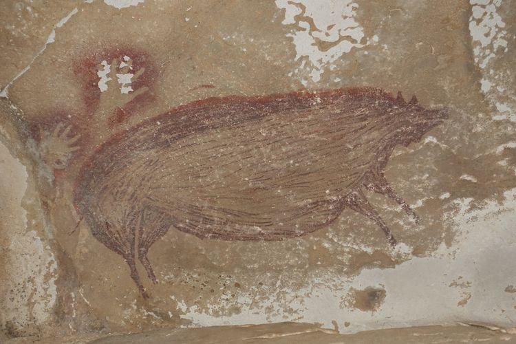 Lukisan gua tertua di dunia menggambarkan babi kutil Sulawesi yang dilukis di dinding gua Leang Tedongnge berumur 45.500 tahun yang lalu. Lukisan prasejarah tertua di dunia ini mengungkapkan sejarah migrasi manusia purba modern, Homo sapiens di Nusantara, Indonesia.