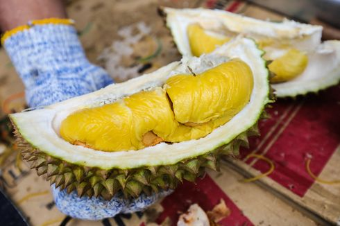 Benarkah Durian Montong dan Musang King Berasal dari Indonesia?